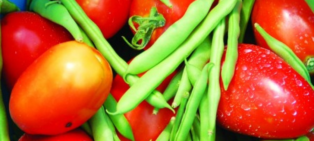 GETHTEDIRTtomatoes n beans