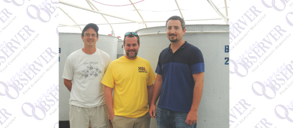 Local Scientists Successfully Raised Pacific Blue Tangs At Lab In Ruskin