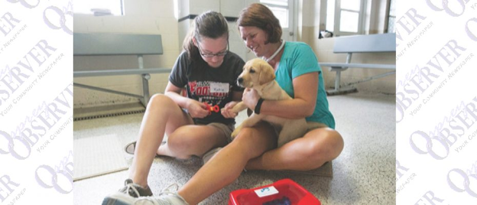 Southeastern Guide Dogs Launches Puppy Kindergarten Adventure