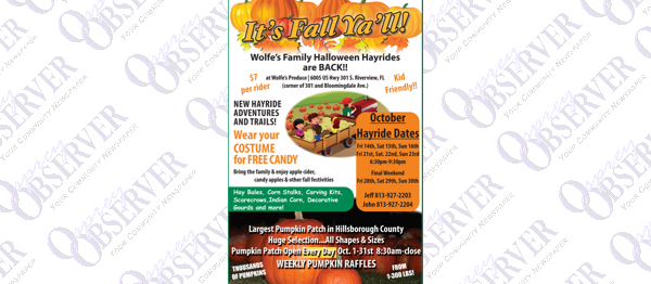 Local Community Fall Festivals, Hayrides, Walks & 5K Runs