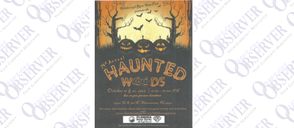 Newsome Trick Or Treat Street, Haunted Woods