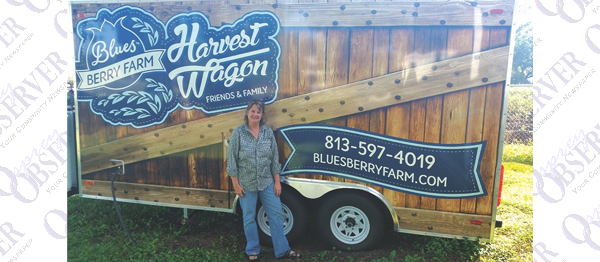 Dumke Finds Innovative Ways To Run Blues Berry Farm In Plant City