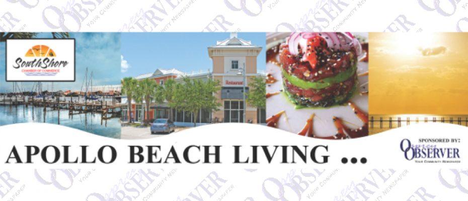 Apollo Beach Living: 2017 January