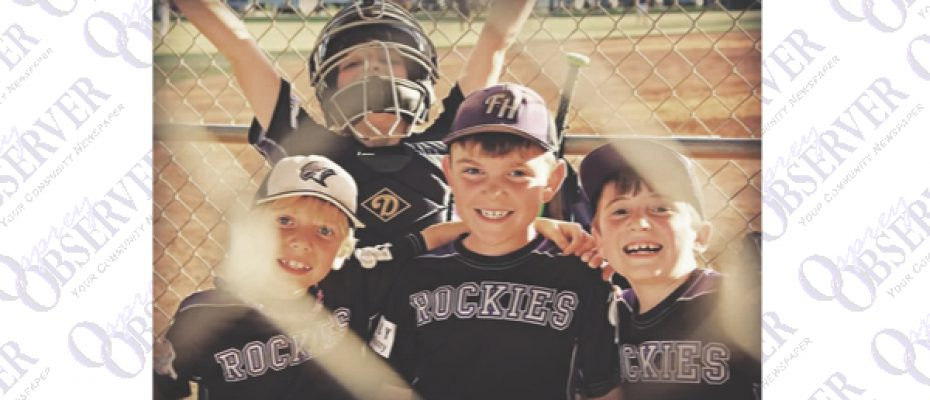 Food Trucks And More Planned For Sports Complex Youth Baseball Kickoff