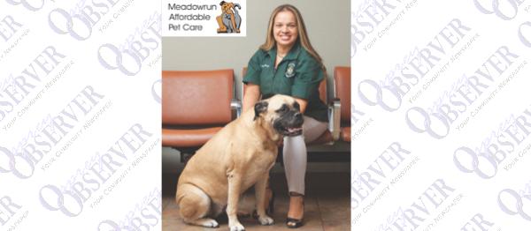 Meadowrun Pet Care
