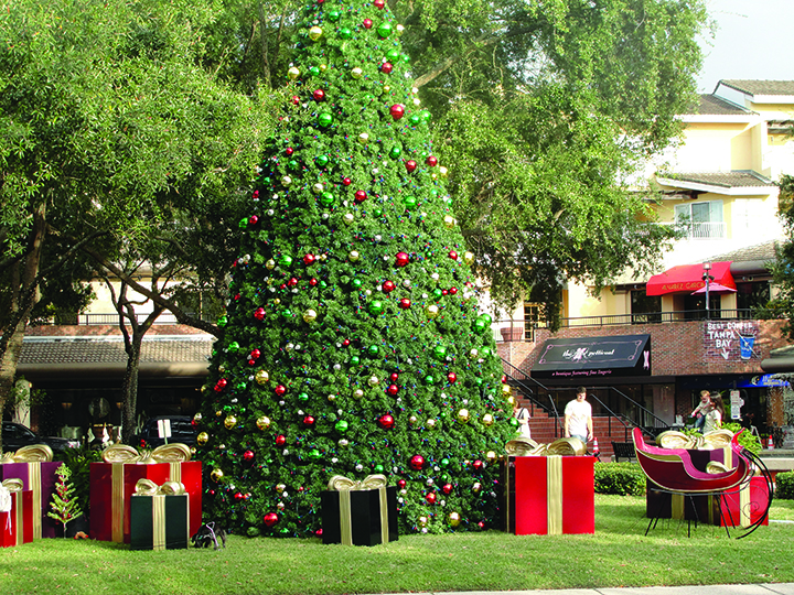 Upcoming Local Holiday Events Include Christmas Tree