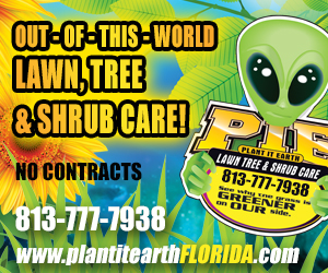 Medium Rectangle – Plant It Earth