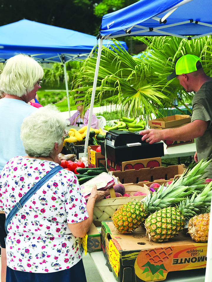 Local Farmers Feed Seniors And Host Public Markets At