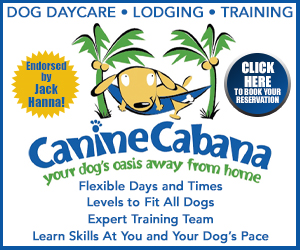 Medium Rectangle – Canine Cabana 2020-03