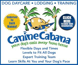 Medium Rectangle – Canine Cabana 2020-03
