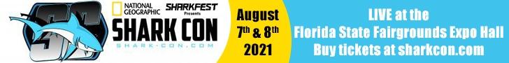 Leaderboard – SharkFest 2021-07